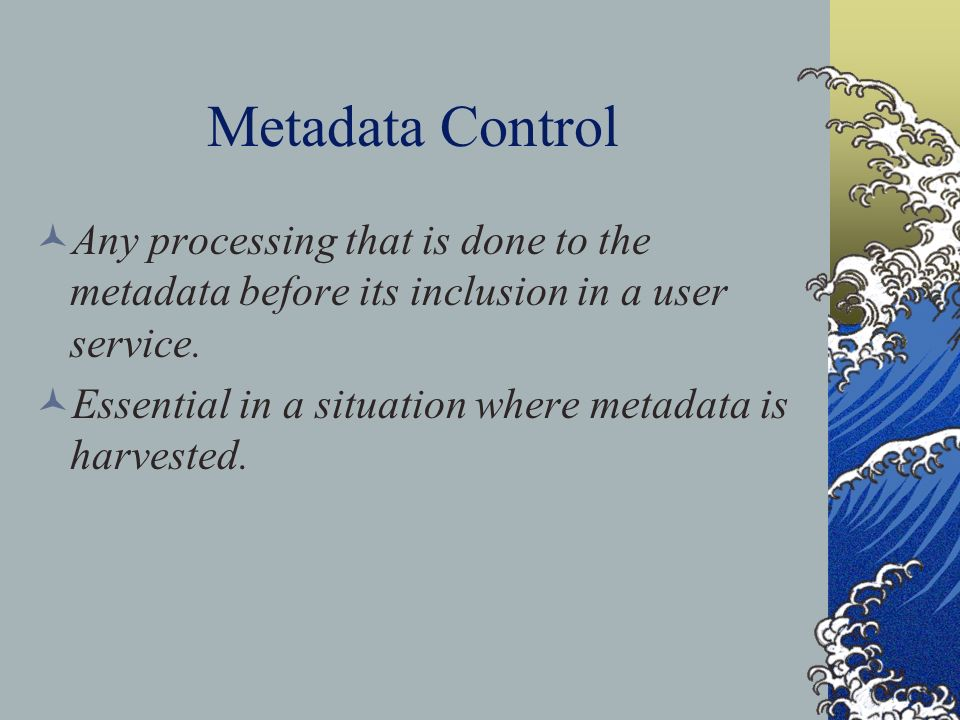 Metadata Control Any processing that is done to the metadata before its inclusion in a user service.