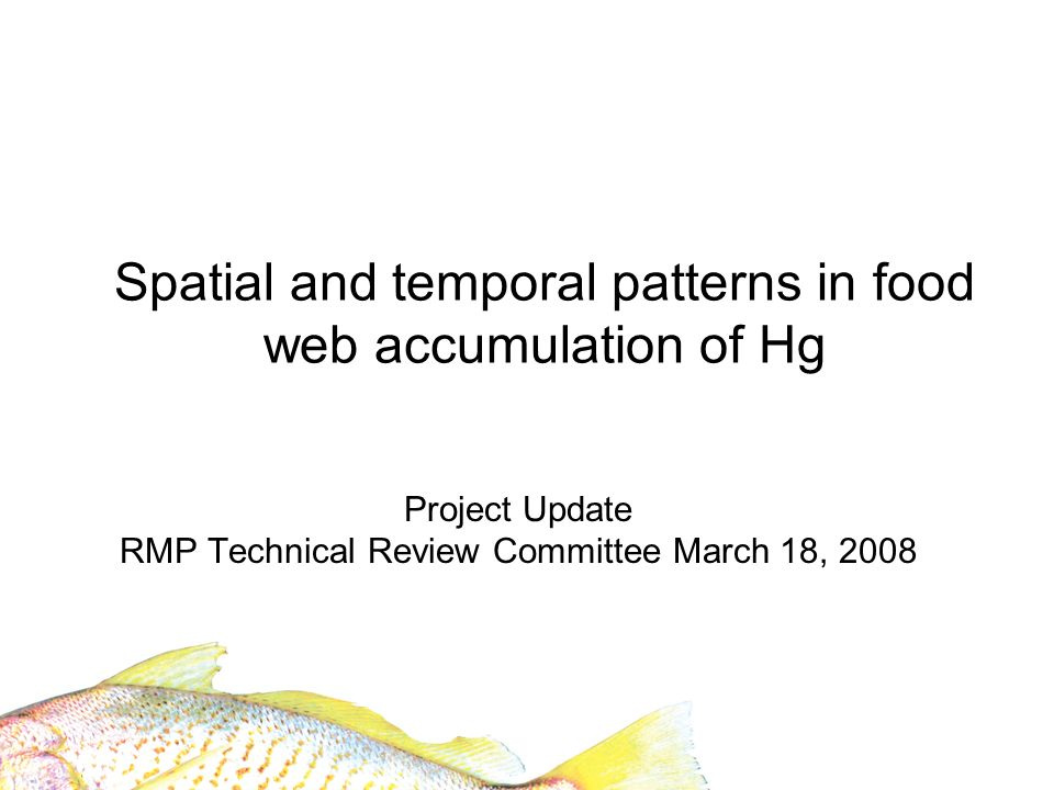 Spatial and temporal patterns in food web accumulation of Hg Project Update RMP Technical Review Committee March 18, 2008