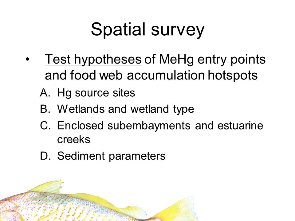 Collection of additional parameters Aimed at better understanding mechanisms for spatial variation in bioavailable Hg GIS spatial parameters Sediment parameters