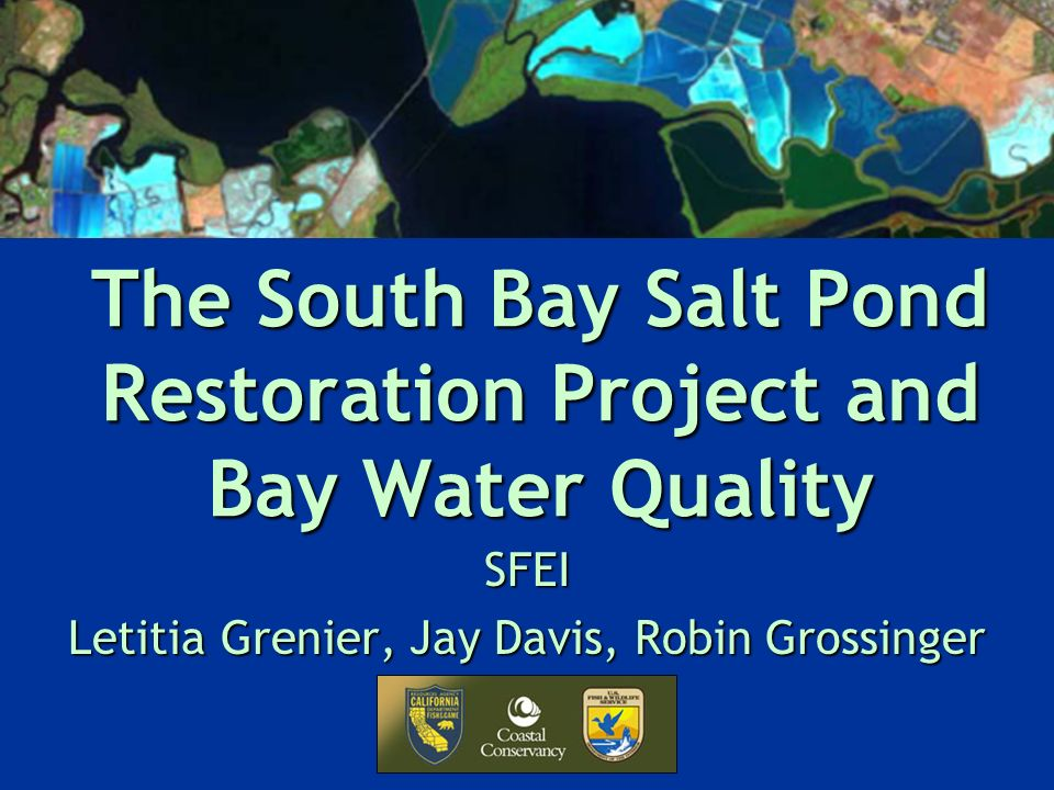 The South Bay Salt Pond Restoration Project and Bay Water Quality SFEI Letitia Grenier, Jay Davis, Robin Grossinger