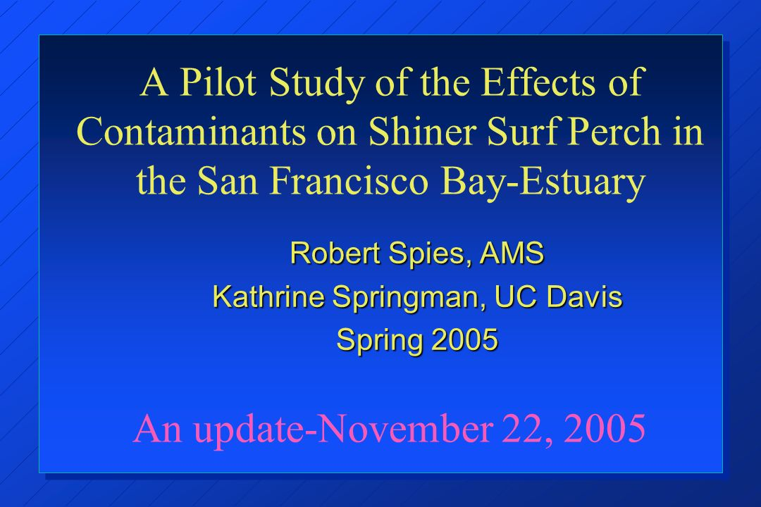 A Pilot Study of the Effects of Contaminants on Shiner Surf Perch in the San Francisco Bay-Estuary An update-November 22, 2005 Robert Spies, AMS Kathrine Springman, UC Davis Spring 2005