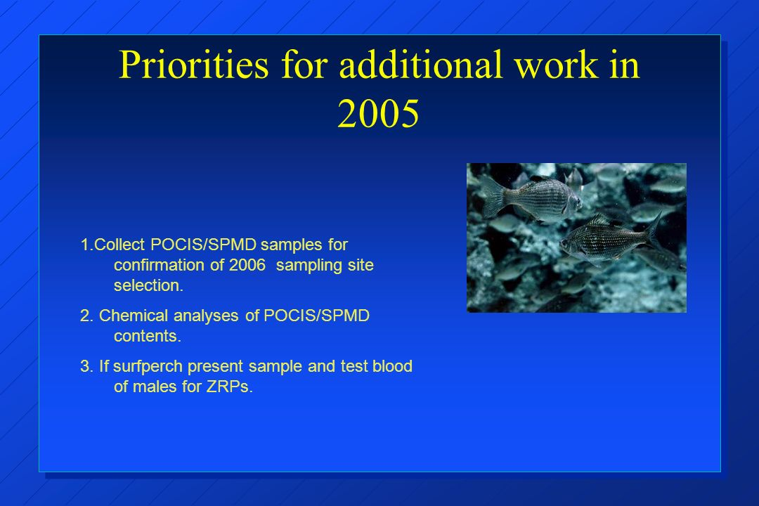 Priorities for additional work in 2005 1.Collect POCIS/SPMD samples for confirmation of 2006 sampling site selection.