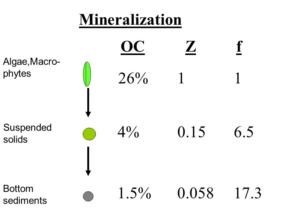 26% 4% 1.5% 1 0.15 0.058 1 6.5 17.3 Mineralization OCZf Algae,Macro- phytes Suspended solids Bottom sediments