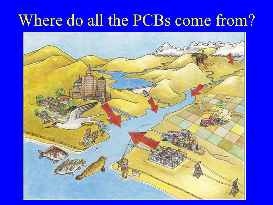 Where do all the PCBs come from