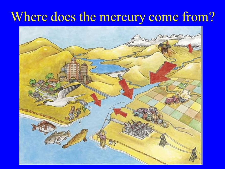 Where does the mercury come from
