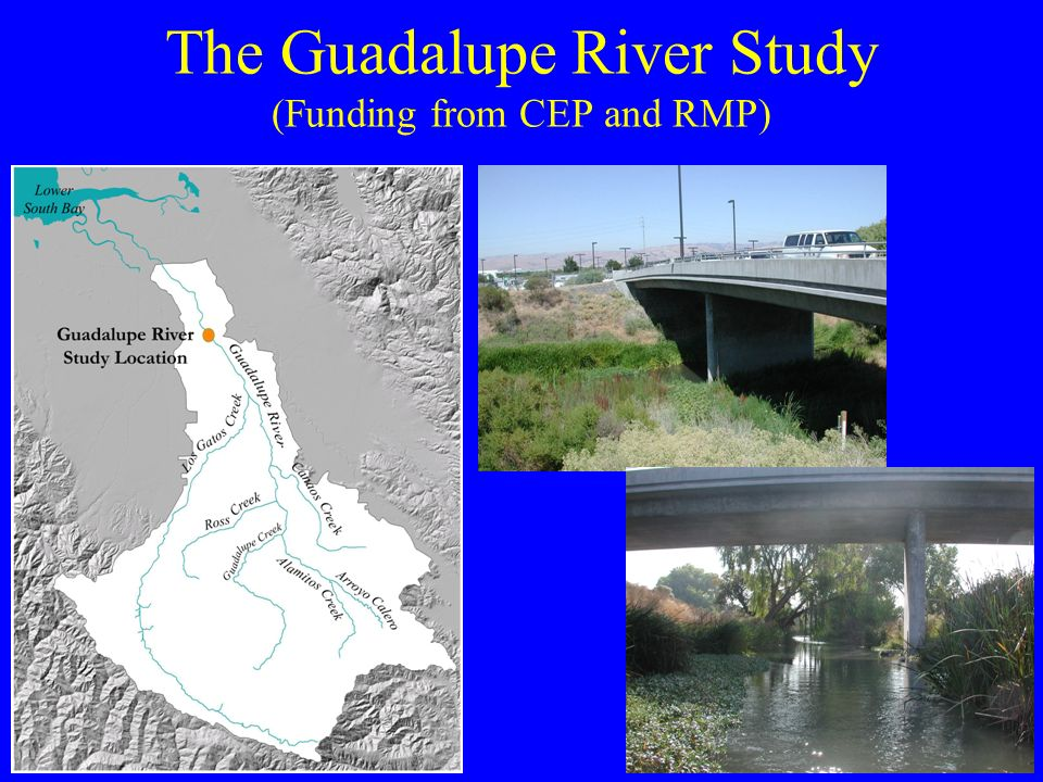 The Guadalupe River Study (Funding from CEP and RMP)