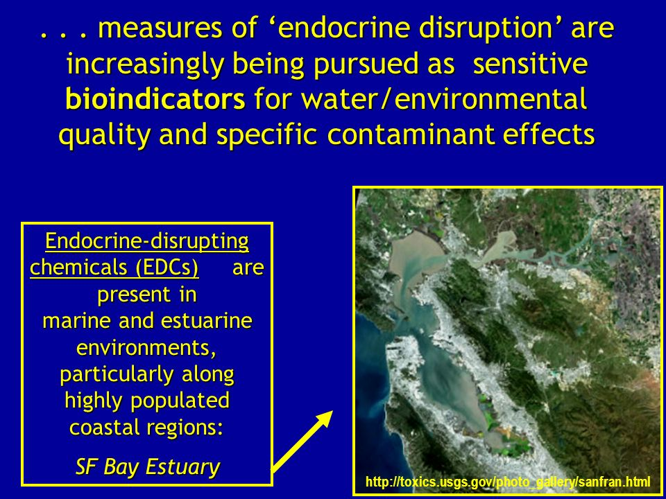 Endocrine-disrupting chemicals (EDCs) are present in marine and estuarine environments, particularly along highly populated coastal regions: SF Bay Es