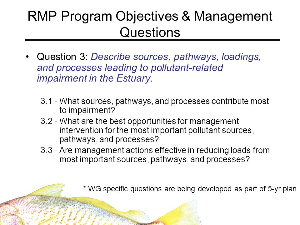 RMP Program Objectives & Management Questions Question 3: Describe sources, pathways, loadings, and processes leading to pollutant-related impairment