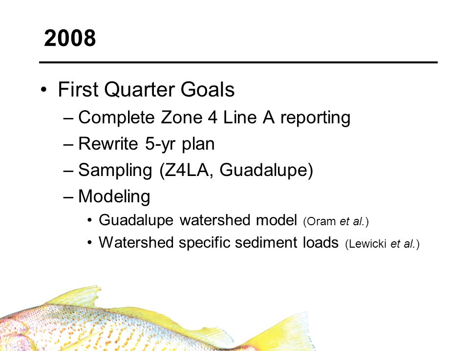 First Quarter Goals –Complete Zone 4 Line A reporting –Rewrite 5-yr plan –Sampling (Z4LA, Guadalupe) –Modeling Guadalupe watershed model (Oram et al.)