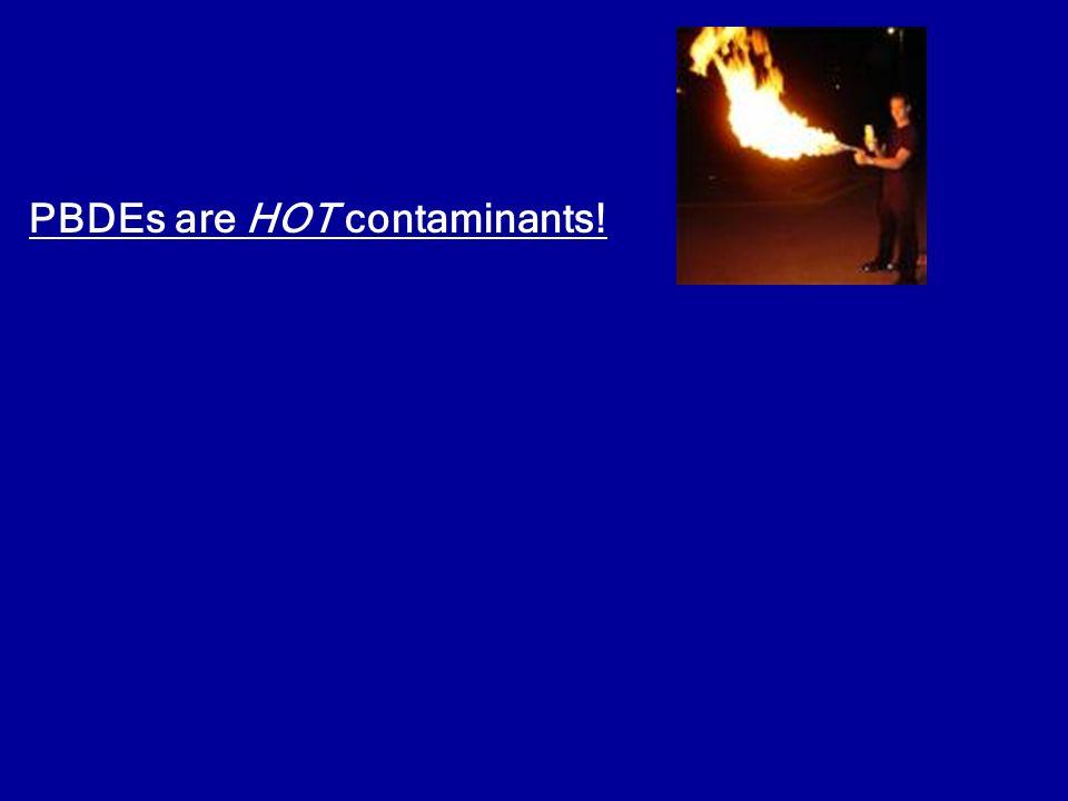 PBDEs are HOT contaminants!