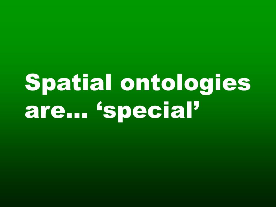 Spatial ontologies are… special