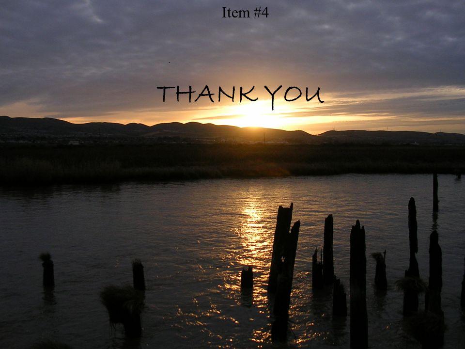 THANK YOU Item #4