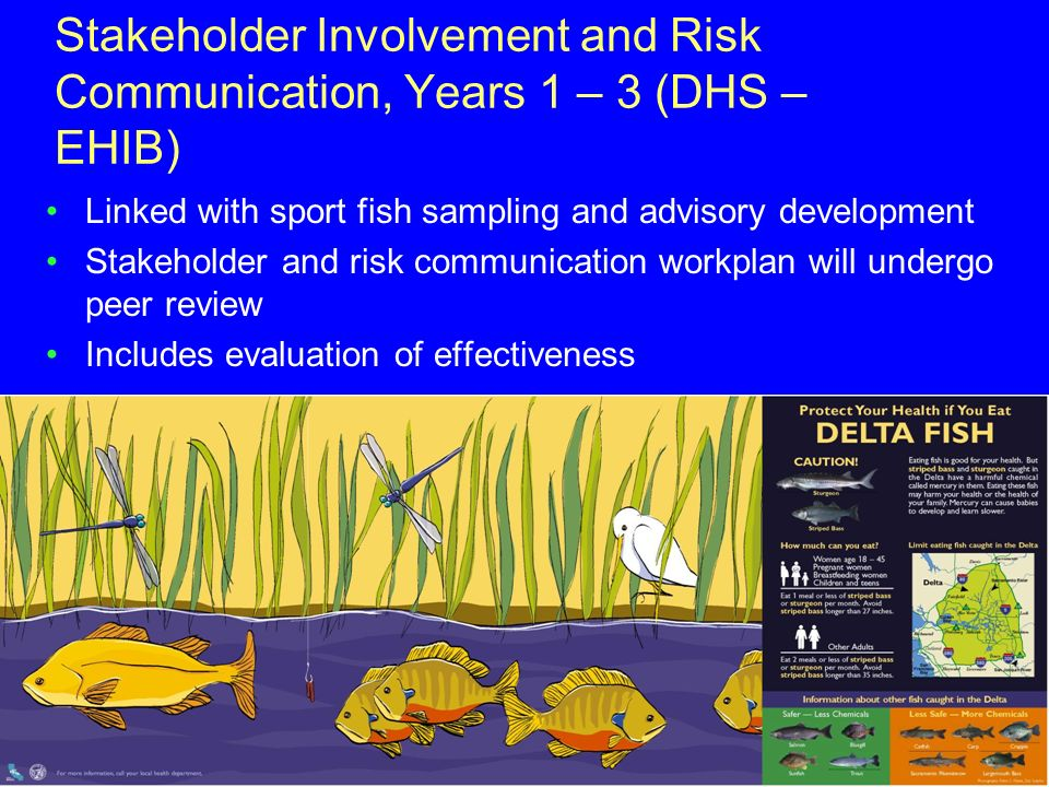 Stakeholder Involvement and Risk Communication, Years 1 – 3 (DHS – EHIB) Linked with sport fish sampling and advisory development Stakeholder and risk