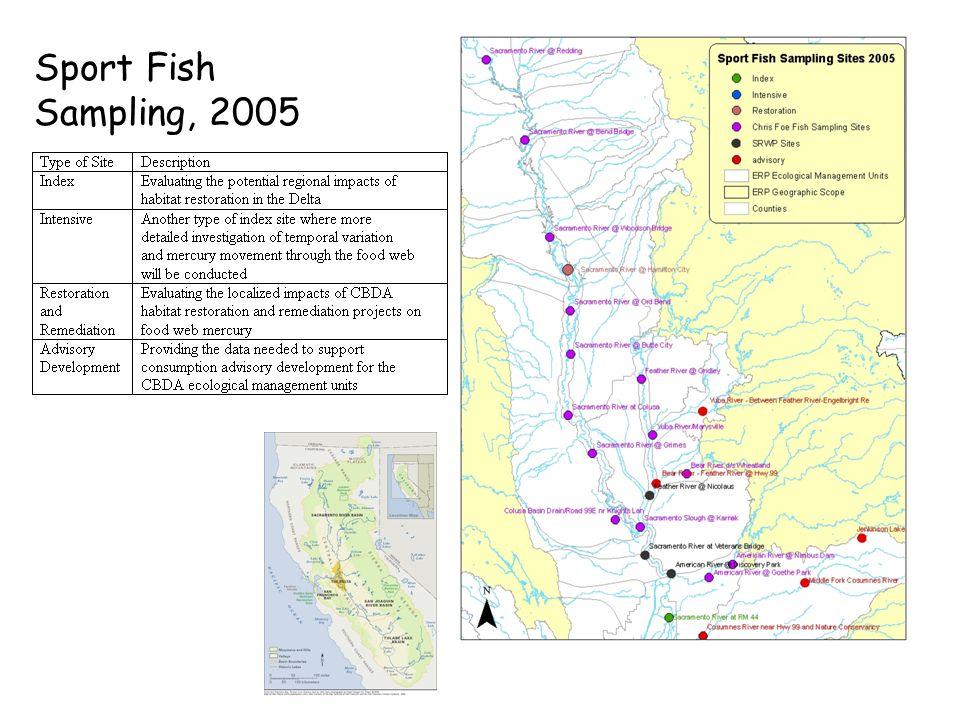 Sport Fish Sampling, 2005