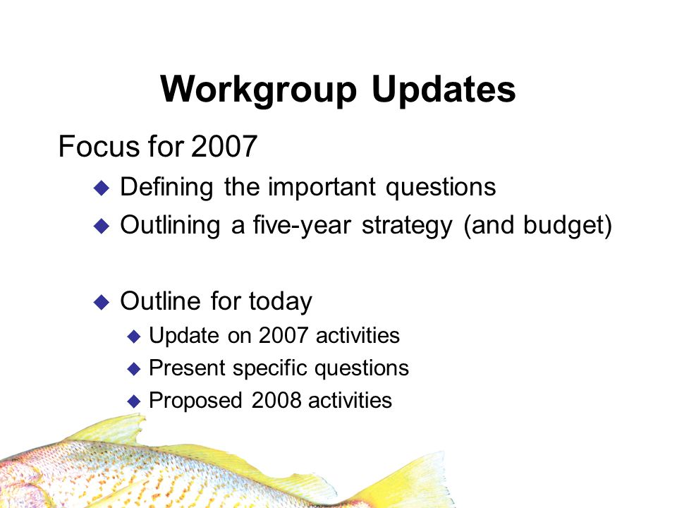 Workgroup Updates Focus for 2007 Defining the important questions Outlining a five-year strategy (and budget) Outline for today Update on 2007 activit