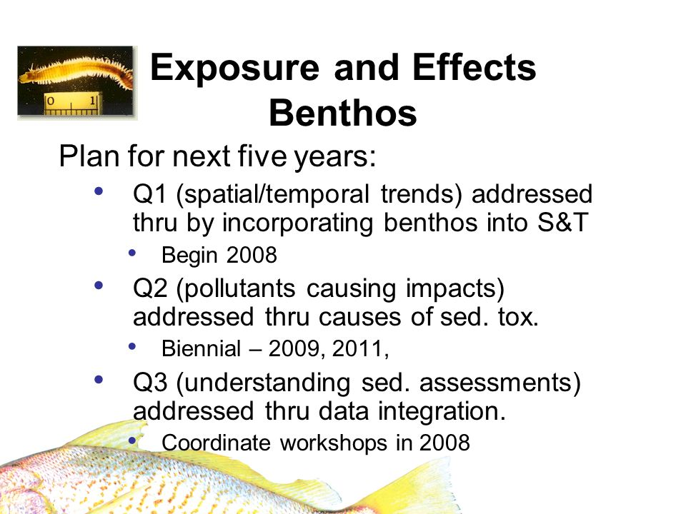 Exposure and Effects Benthos Plan for next five years: Q1 (spatial/temporal trends) addressed thru by incorporating benthos into S&T Begin 2008 Q2 (po