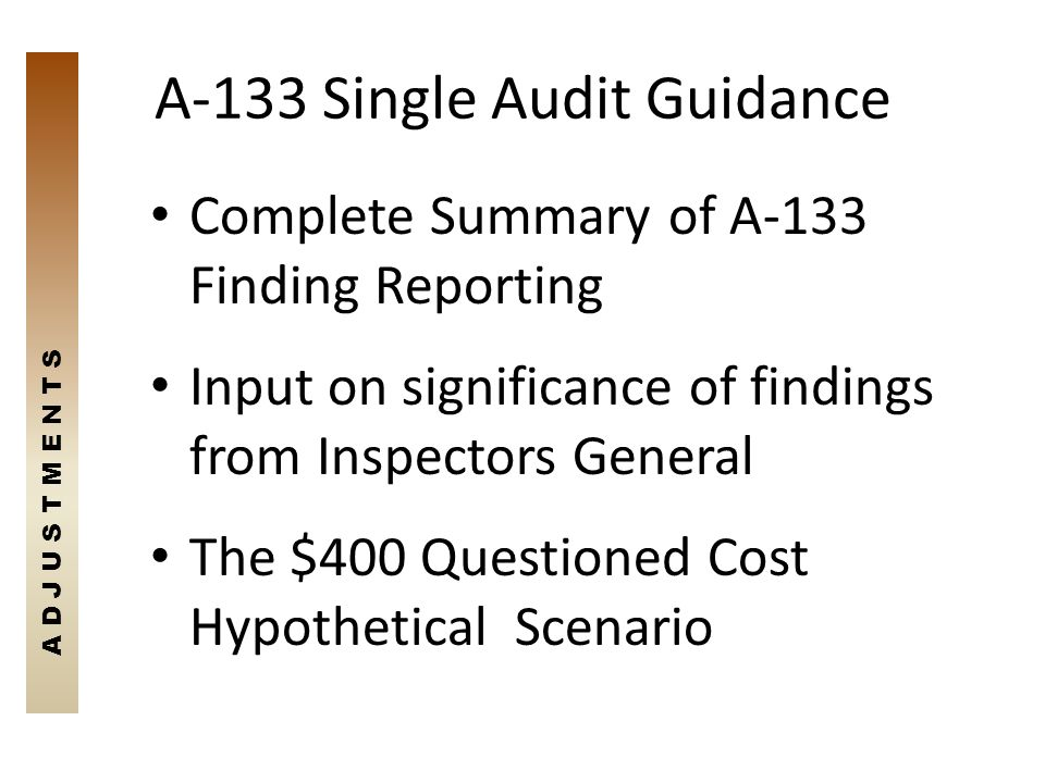 A-133 Single Audit Guidance Complete Summary of A-133 Finding Reporting Input on significance of findings from Inspectors General The $400 Questioned