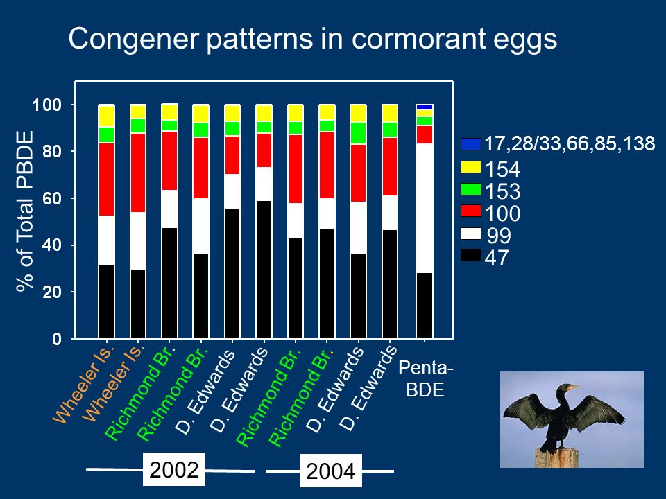 Congener patterns in cormorant eggs ,28/33,66,85,138 Wheeler Is.