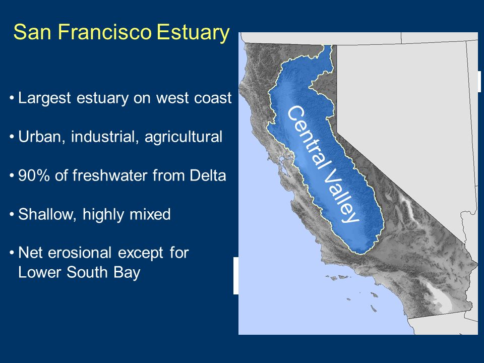 San Francisco Estuary Largest estuary on west coast Urban, industrial, agricultural 90% of freshwater from Delta Shallow, highly mixed Net erosional except for Lower South Bay Delta Pacific Ocean Central Valley
