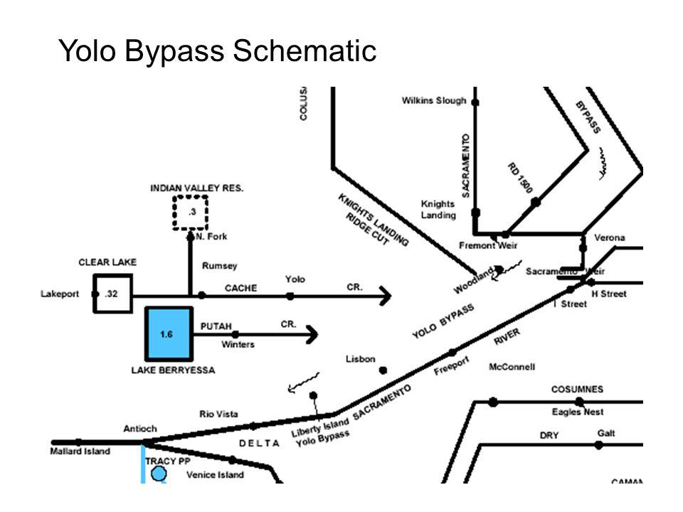 Sacramento River Flood Control System Shasta Dam Hillcrest Freeport