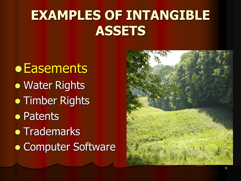 3 EXAMPLES OF INTANGIBLE ASSETS Easements Easements Water Rights Water Rights Timber Rights Timber Rights Patents Patents Trademarks Trademarks Comput