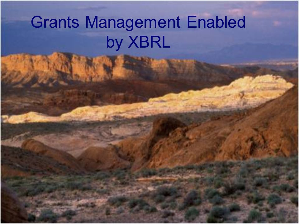 Grants Management Enabled by XBRL