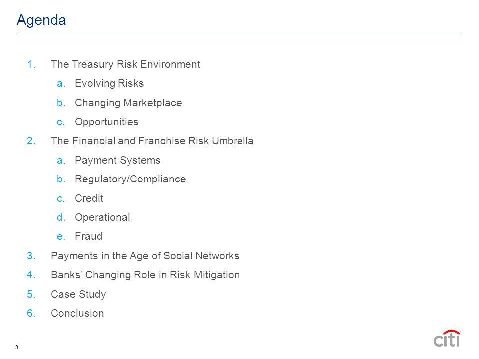 4 The Treasury Risk Environment