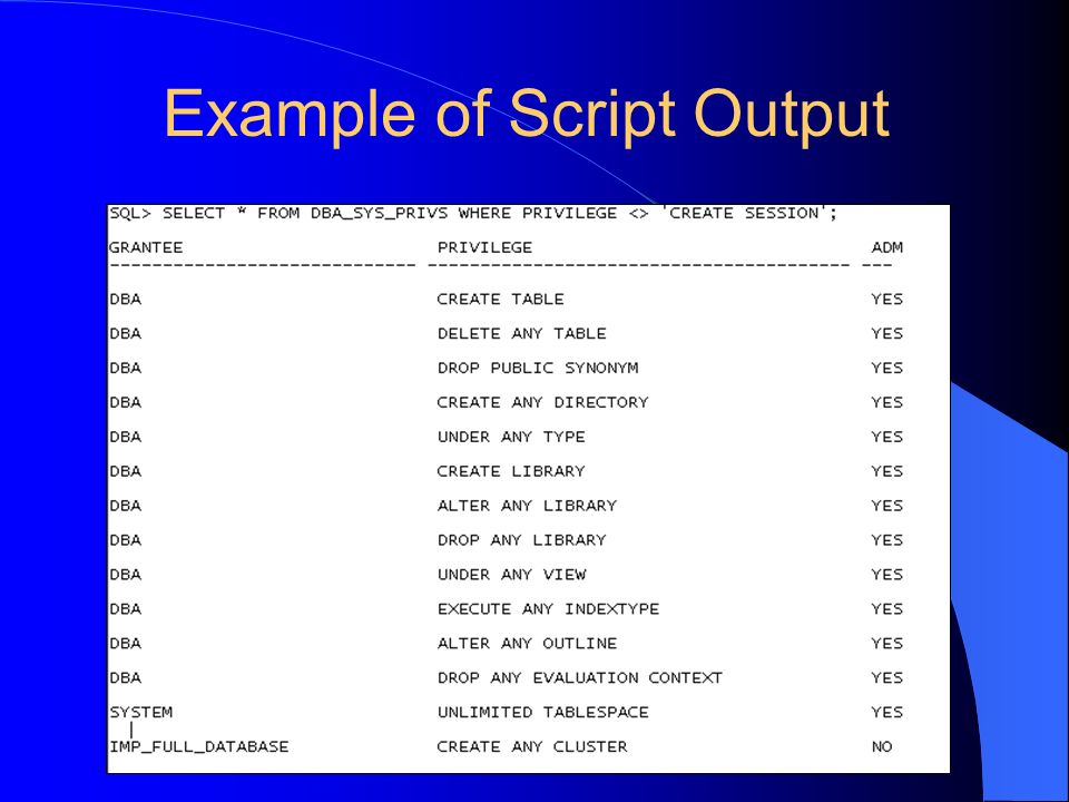 Example of Script Output