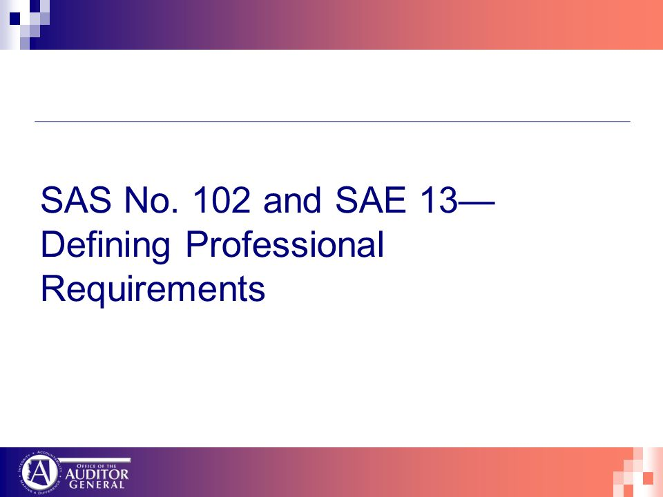 SAS No. 102 and SAE 13 Defining Professional Requirements