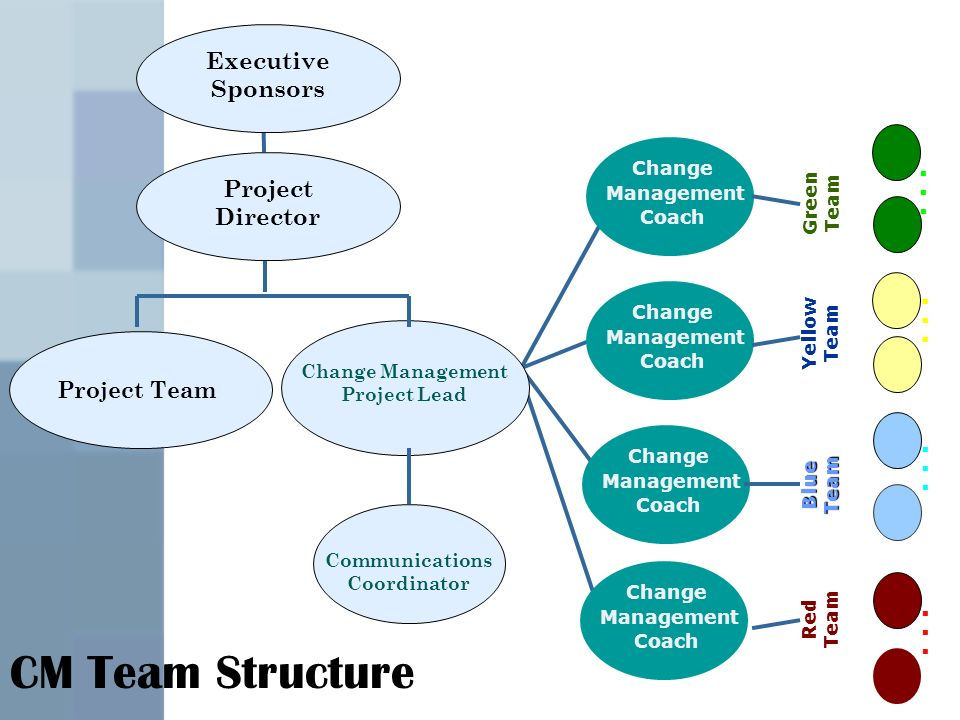 Executive Sponsors Project Team Change Management Project Lead Communications Coordinator Change Management Coach Change Management Coach Change Management Coach Change Management Coach Green Team Yellow Team Blue Team Red Team...