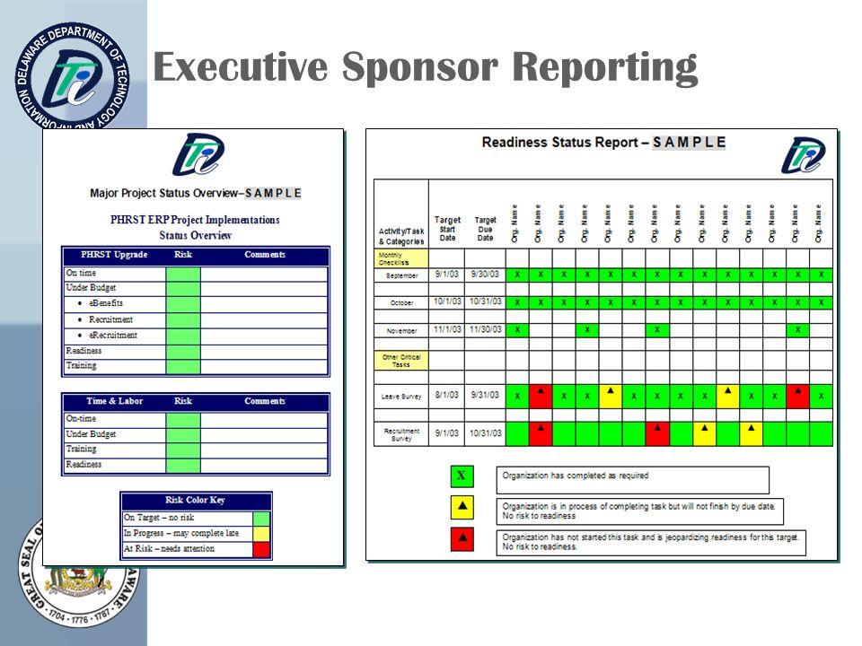 Executive Sponsor Reporting