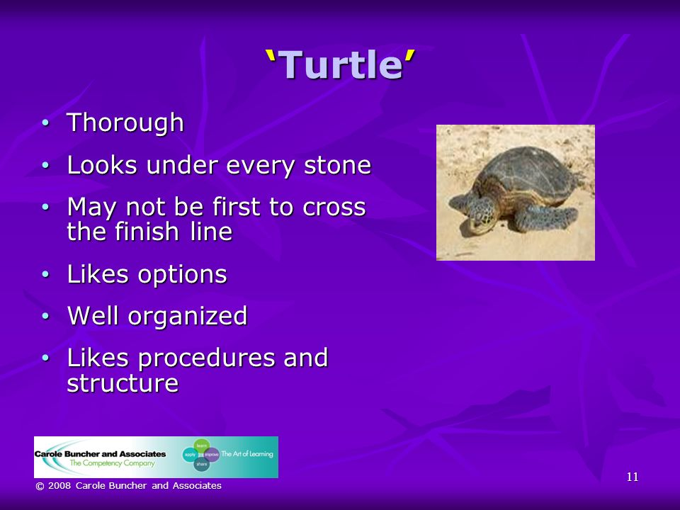 © 2008 Carole Buncher and Associates TurtleTurtle Thorough Thorough Looks under every stone Looks under every stone May not be first to cross the finish line May not be first to cross the finish line Likes options Likes options Well organized Well organized Likes procedures and structure Likes procedures and structure 11