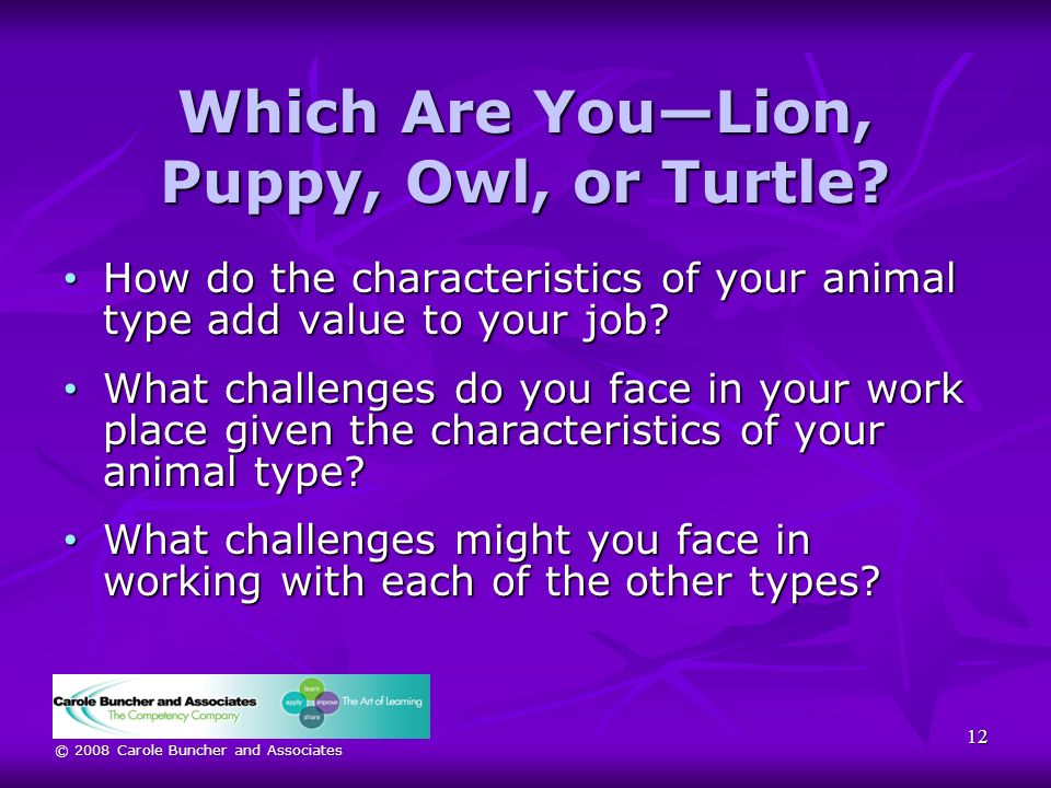 © 2008 Carole Buncher and Associates Which Are YouLion, Puppy, Owl, or Turtle.
