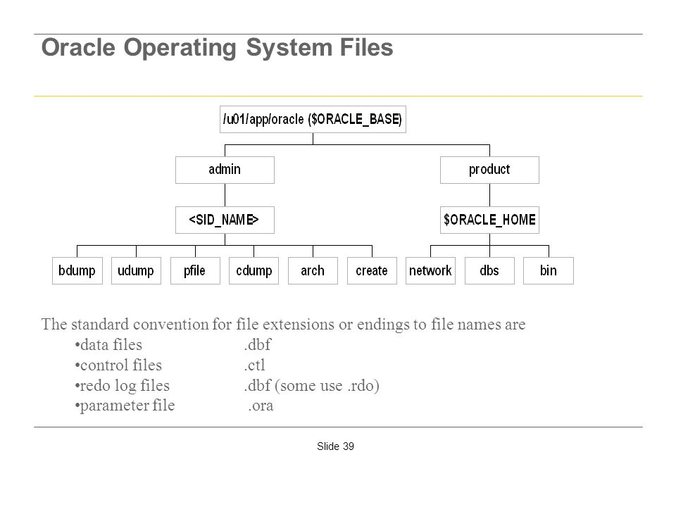 Slide 39 Oracle Operating System Files The standard convention for file extensions or endings to file names are data files.dbf control files.ctl redo