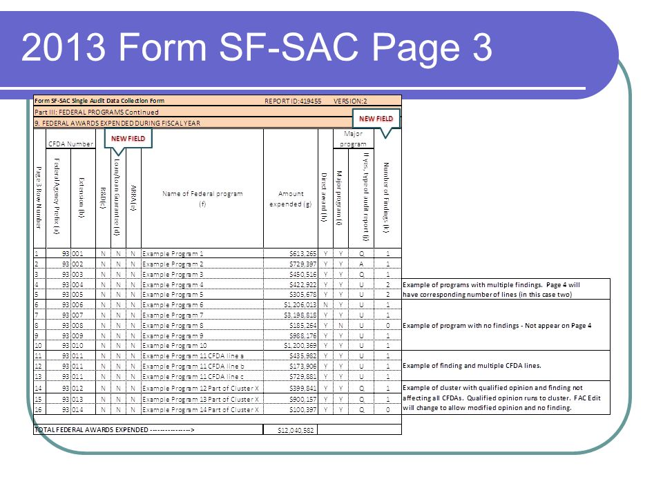 2013 Form SF-SAC Page 3