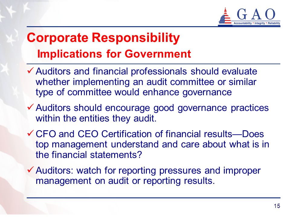 15 Corporate Responsibility Implications for Government Auditors and financial professionals should evaluate whether implementing an audit committee o