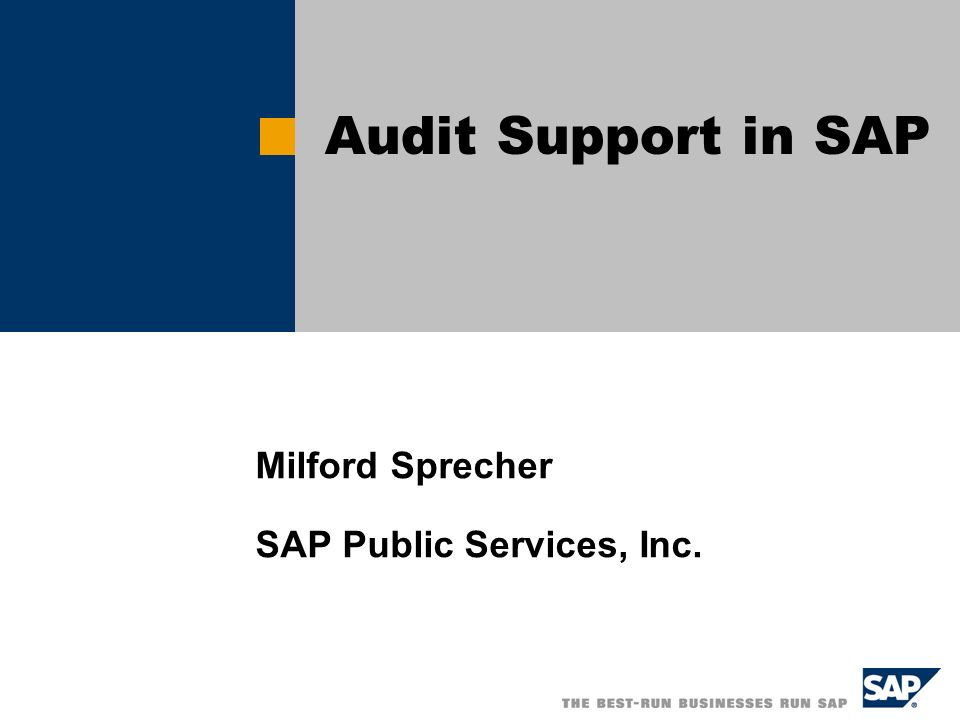 Milford Sprecher SAP Public Services, Inc. Audit Support in SAP