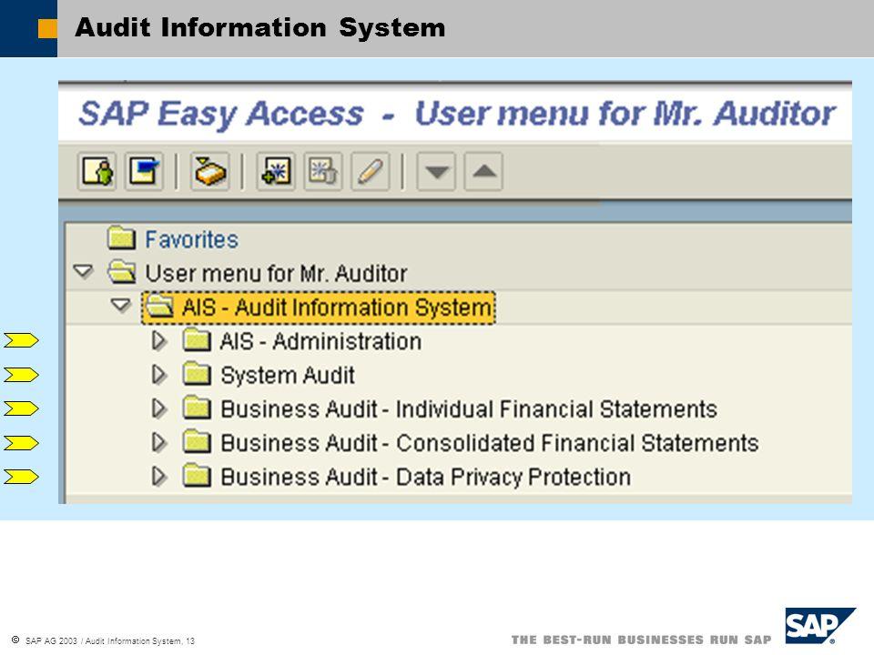 SAP AG 2003 / Audit Information System, 13 Audit Information System