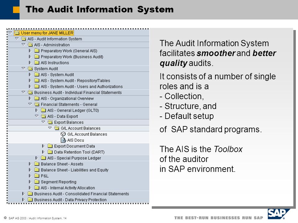 SAP AG 2003 / Audit Information System, 14 The Audit Information System facilitates smoother and better quality audits. It consists of a number of sin
