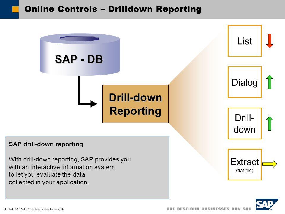 SAP AG 2003 / Audit Information System, 19 SAP - DB Drill-down Reporting SAP drill-down reporting With drill-down reporting, SAP provides you with an