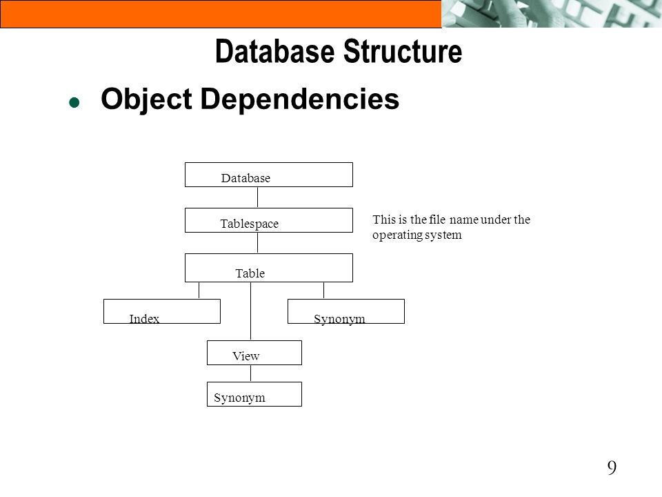 9 l Object Dependencies Database Tablespace Table IndexSynonym View Synonym This is the file name under the operating system Database Structure