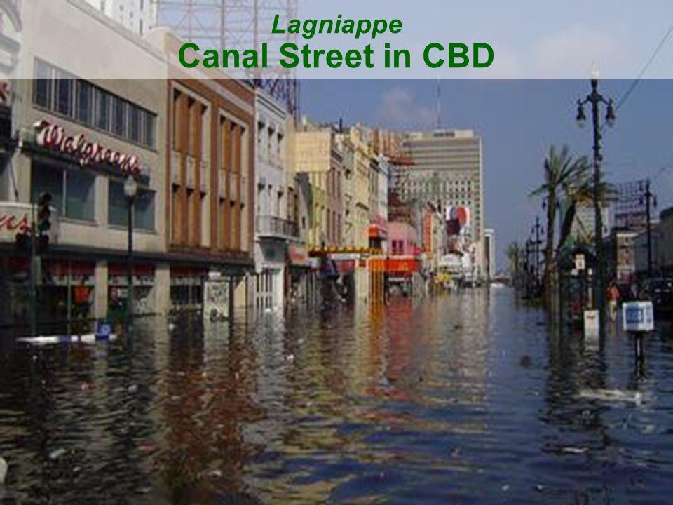 41 Lagniappe Canal Street in CBD