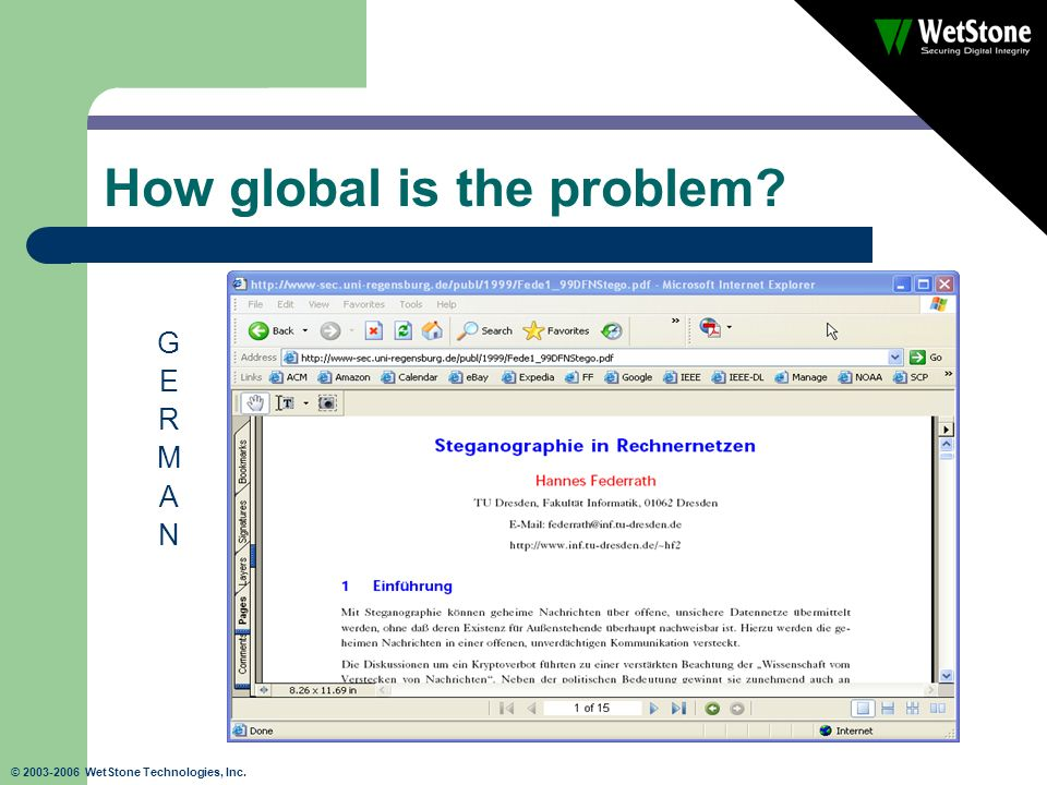 © 2003-2006 WetStone Technologies, Inc. How global is the problem? GERMANGERMAN