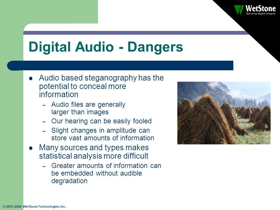 © 2003-2006 WetStone Technologies, Inc. Digital Audio - Dangers Audio based steganography has the potential to conceal more information – Audio files