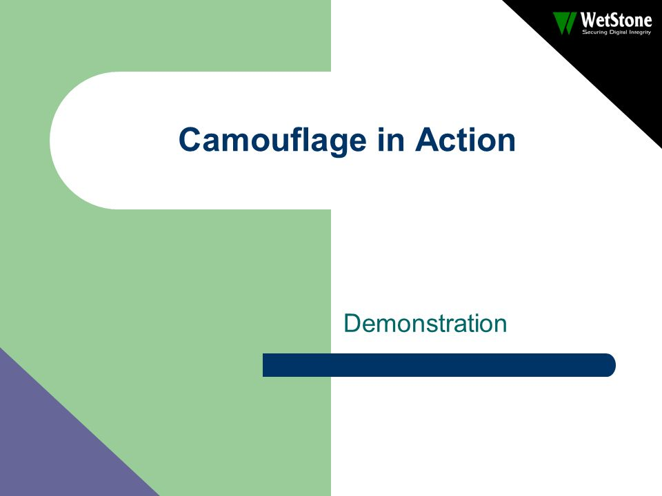 Camouflage in Action Demonstration