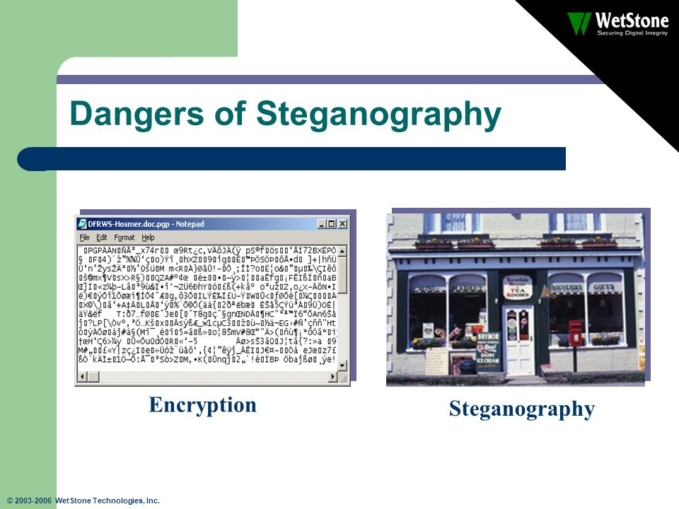 © 2003-2006 WetStone Technologies, Inc. Dangers of Steganography Steganography Encryption