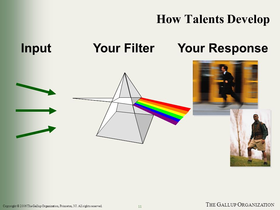 T HE G ALLUP O RGANIZATION 11 How Talents Develop InputYour FilterYour Response Copyright © 2006 The Gallup Organization, Princeton, NJ. All rights re
