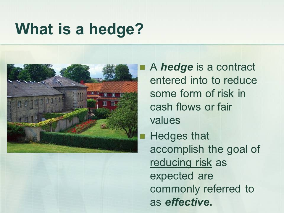 What is a hedge.