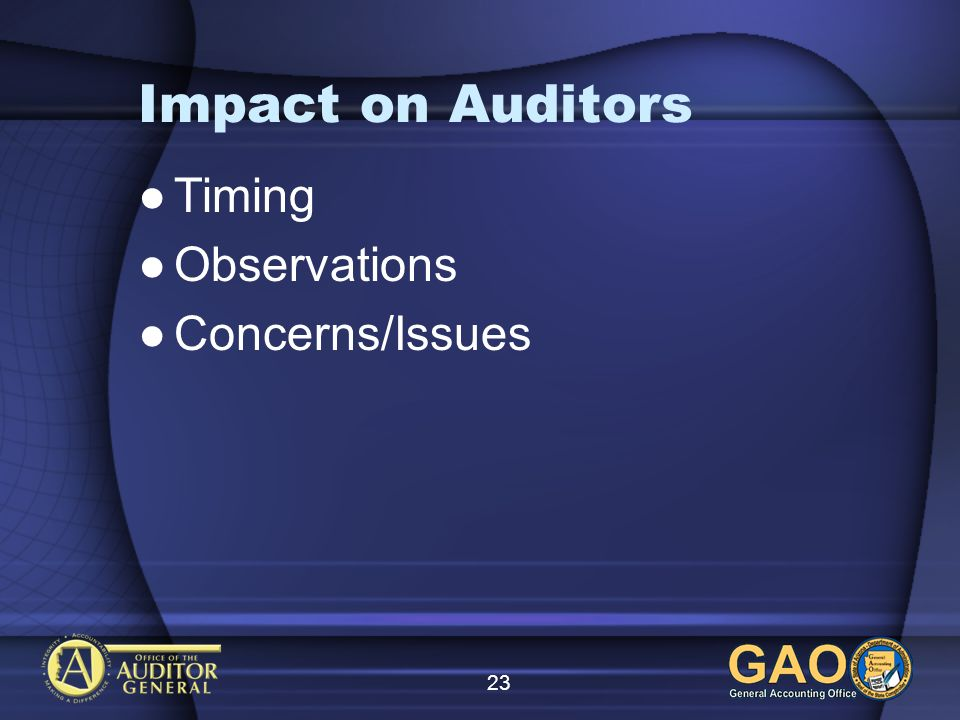23 Impact on Auditors Timing Observations Concerns/Issues