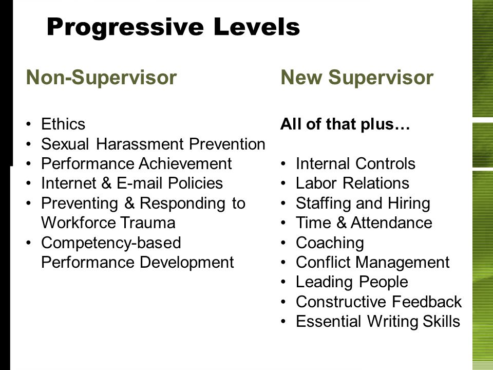 Progressive Levels Non-Supervisor Ethics Sexual Harassment Prevention Performance Achievement Internet & E-mail Policies Preventing & Responding to Wo